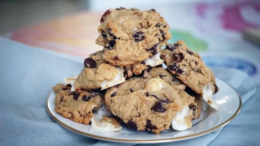 Delightful Smore flavored vegan christmas cookies