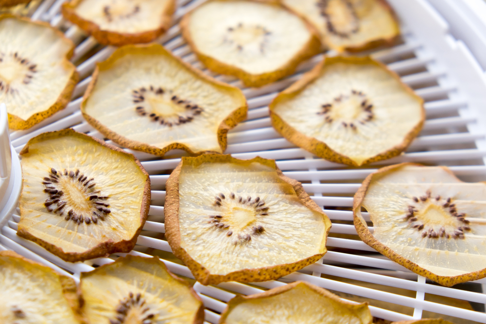 photo shows dehydrated kiwis made in a food dehydrator