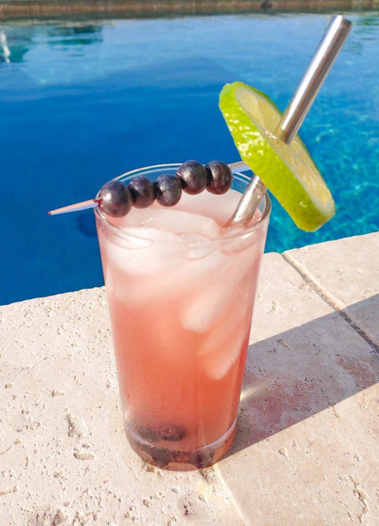 blueberry vodka drink recipe with garnish
