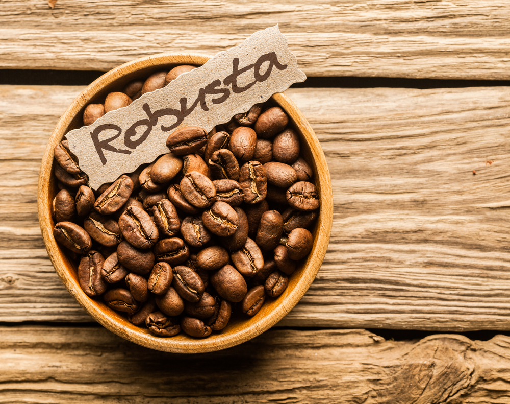 Robusta  Beans in a bowl
