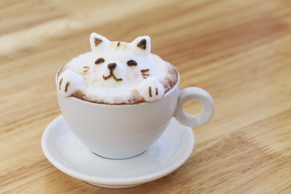 Cappuccino  with foam made into a cat